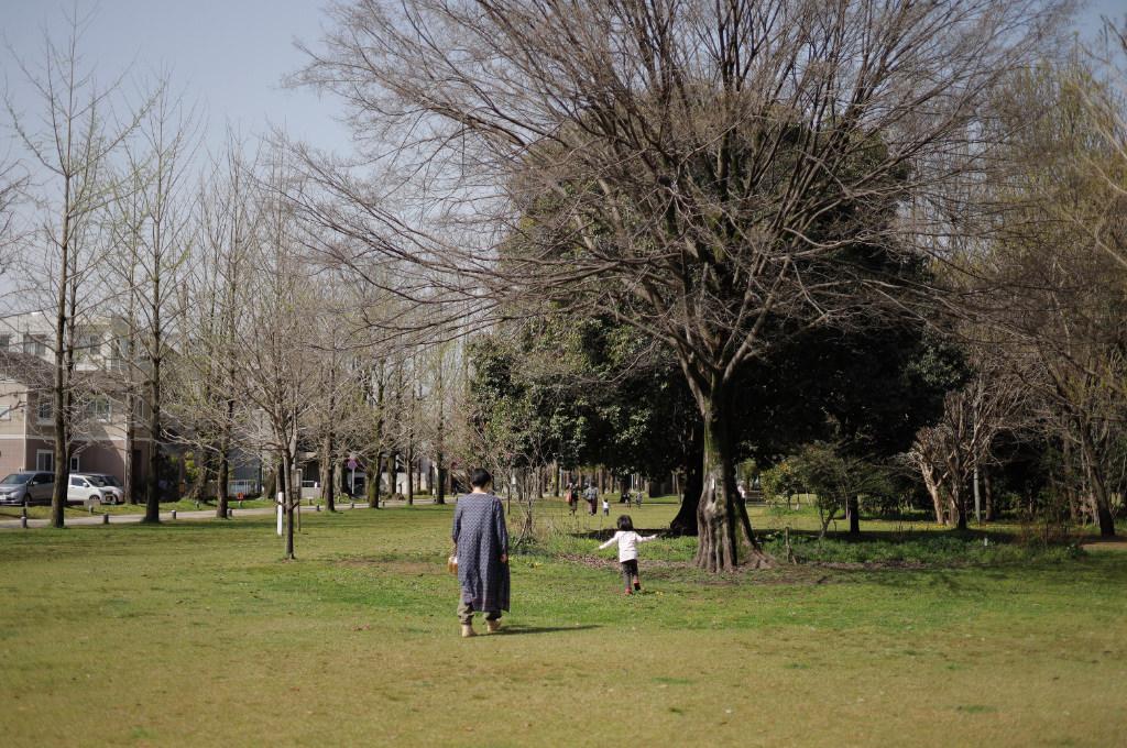 学びの森を歩く親子