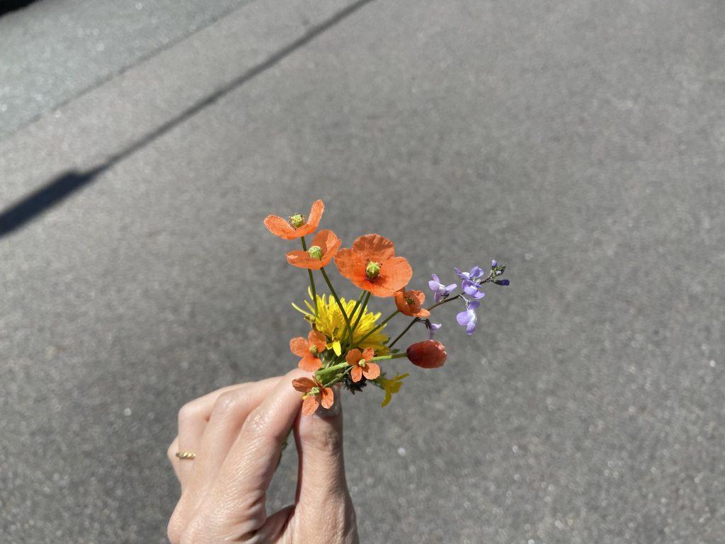 道端でつんだ野の花