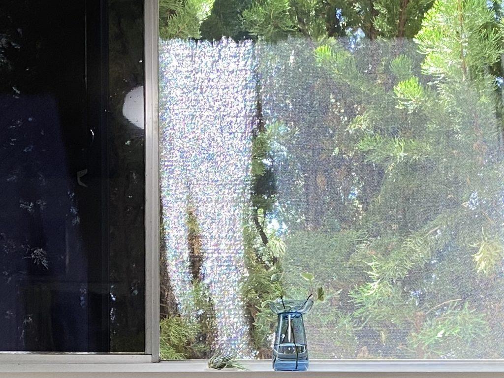 窓から見える風景。