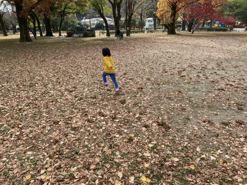 公園の落ち葉の絨毯でダッシュする子ども